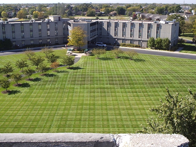 Timber Crest Offers Lawn Maintenance To South Holland